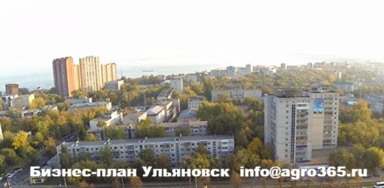 Бизнес-планирование Ульяновск