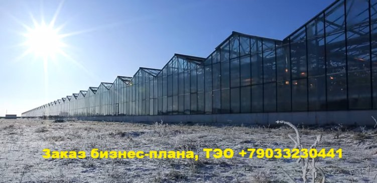 Услуги бизнес-планирования в Саранске