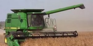 бизнес-план хозяйства по растениеводству