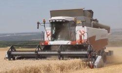 бизнес-план зерновой компании в Саратовской области