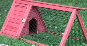 декоративная клетка для кроликов