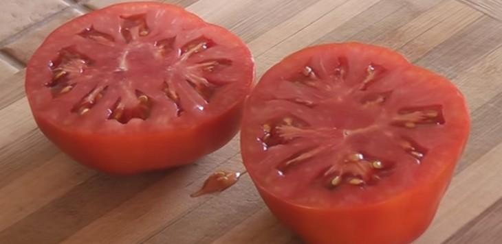 сорт томата хоумстед красный