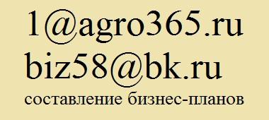 разработка плана бизнеса в Барнауле