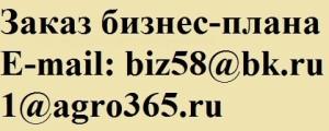 разработка бизнес-плана ТЭО предприятия в Самаре