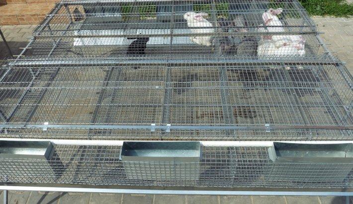металлическая клетка для откорма кроликов
